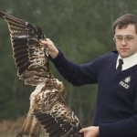 Investigating wild bird crime